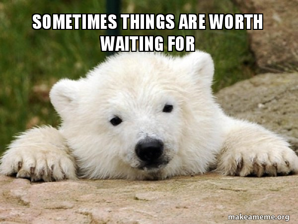 sometimes things are worth waiting for - Popular Opinion Bear   Make a Meme